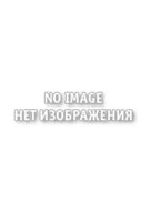 At the Zoo: Coloring Book
