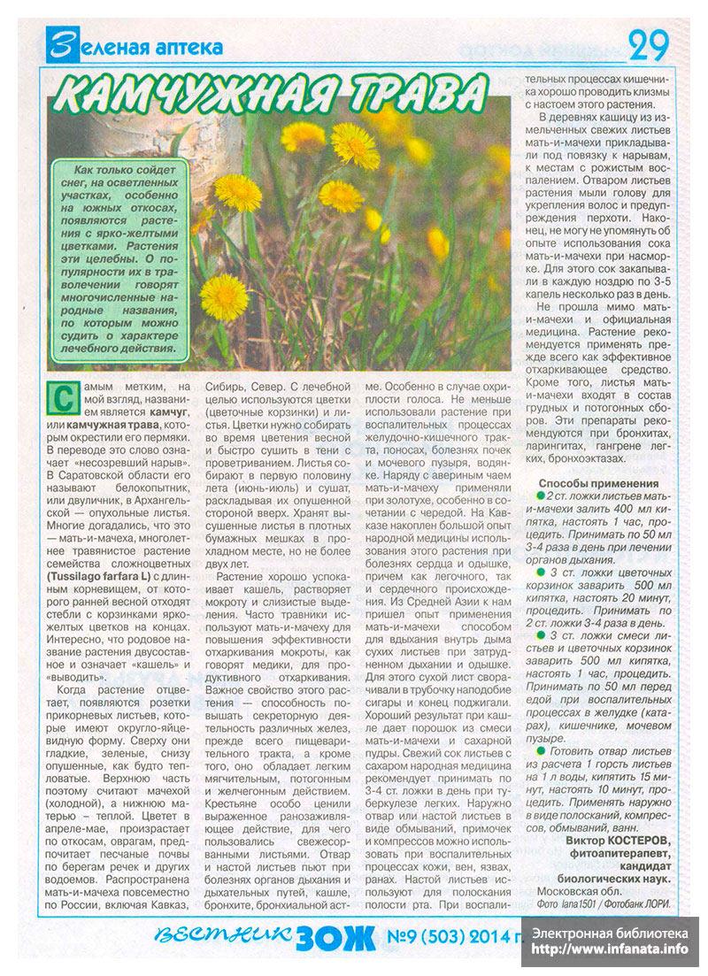 Вестник ЗОЖ №9 (503) 2014 страница 29